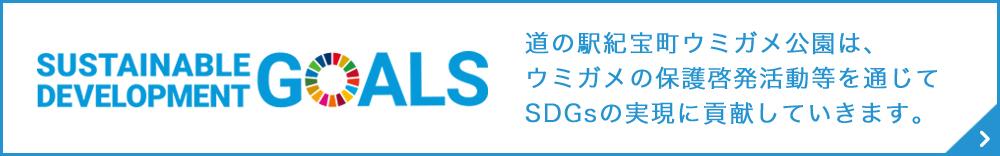 SUSTAINABLE DEVELOPMENT GOALS 道の駅紀宝町ウミガメ公園は、ウミガメの保護啓発活動等を通じてSDGsの実現に貢献していきます。