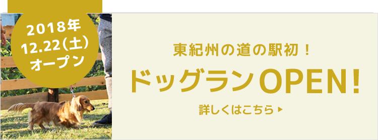 紀宝町ウミガメ公園 ドッグランはじめました!